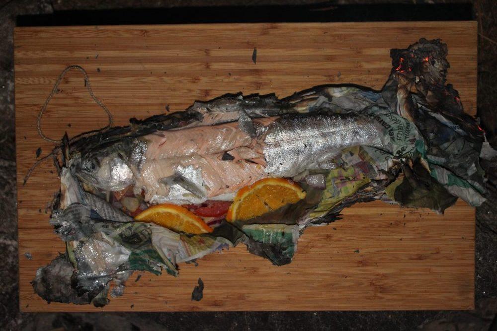 Fish in Newspaper