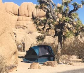tent in California