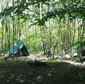 Welsummer campsite