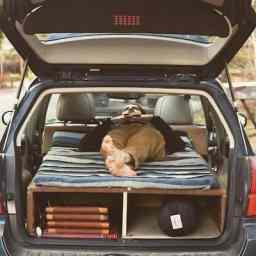 car camp 10