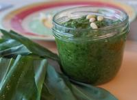 wild garlic recipes