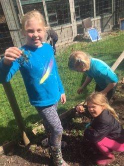 Camp Sealth Service Weekend garden