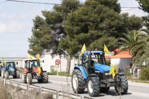 tractoradamanchareal