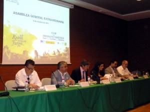 Asamblea_castillos_y_batallas_para_presentar_nueva_campaxa_promocixn_ok