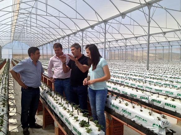 Reyes y Alves han conocido la explotación de manos del gerente de la empresa, Ricardo Rodríguez.