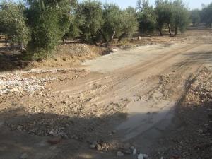 Camino rural en la comarca de Andújar.