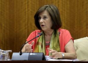 Sánchez Rubio, en comisión parlamentaria. Foto: Junta de Andalucía.
