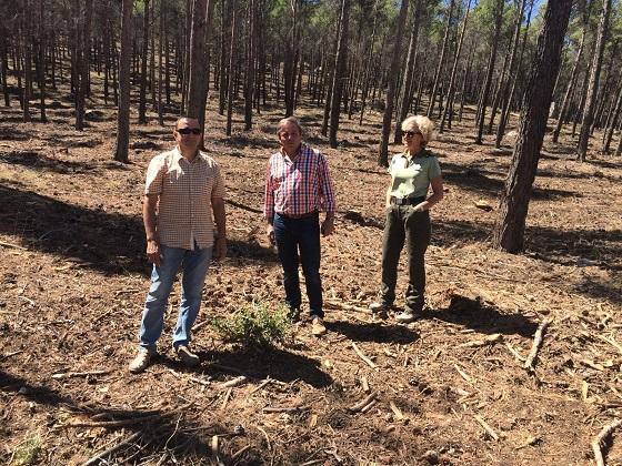 El delegado territorial de Medio Ambiente y Ordenación del Territorio, Juan Eugenio Ortega,  en un momento de su visita al monte de Santa Catalina.