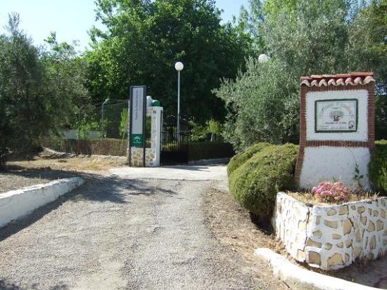 Centro Regional de Rehabilitación de Drogodependientes de Lopera.