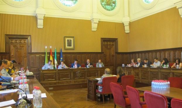 Pleno extraordinario sobre el Debate del estado de la provincia celebrado hoy.