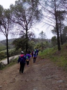 Senderistas en una de las rutas organizadas dentro del programa