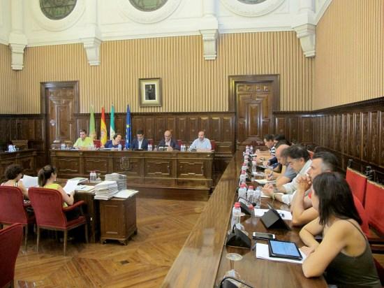 Un momento del pleno celebrado por la Diputación Provincial de Jaén.
