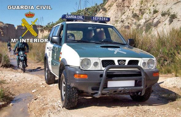 Furtivismo en la Sierra de Andújar