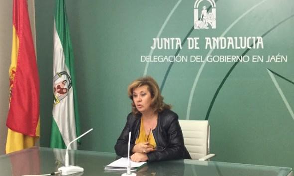 Nuevas áreas de gestión sanitaria para la provincia de Jaén