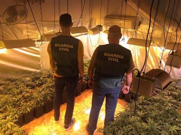 Marihuana en Marmolejo