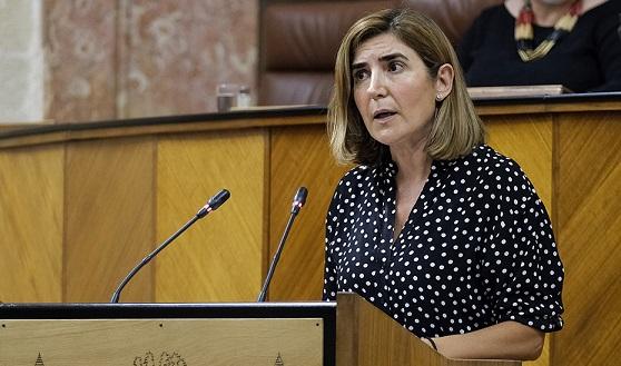 El 98,2% de los ayuntamientos ha solicitado ayudas de la Iniciativa AIRE del Gobierno de Andalucía.