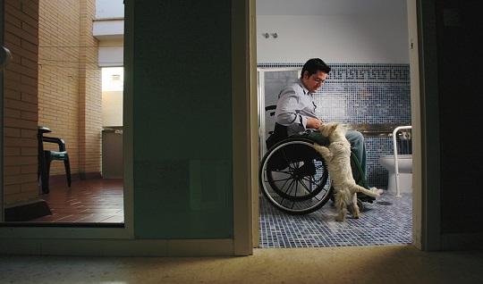 Más de 578.000 personas en Andalucía tienen reconocido al menos un 33% de discapacidad.