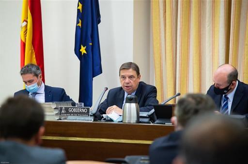 Luis Planas: Agricultores y ganaderos contarán «por necesidad y justicia» con una PAC de más de 50.000 millones de euros.
