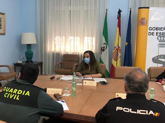 La Guardia Civil y la Policía Nacional desarrollan operativos conjuntos en varios municipios para velar por la seguridad ciudadana.