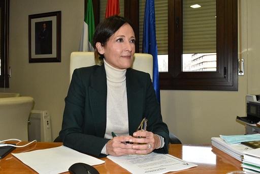 Maribel Lozano destaca ante el CES el papel clave del presupuesto andaluz para generar confianza ante la incertidumbre.