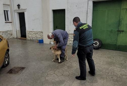 La Guardia Civil investiga a dos personas por presuntas autoras de cuatro Delitos de Robo.