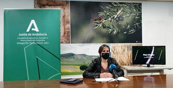 Agricultura invierte 13 millones de euros en la mejora de 40 caminos rurales de Jaén.
