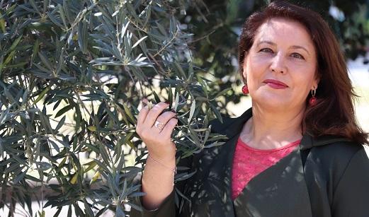 La Junta aplaude la suspensión temporal de los aranceles de Estados Unidos que afectan a productos andaluces como el aceite de oliva.