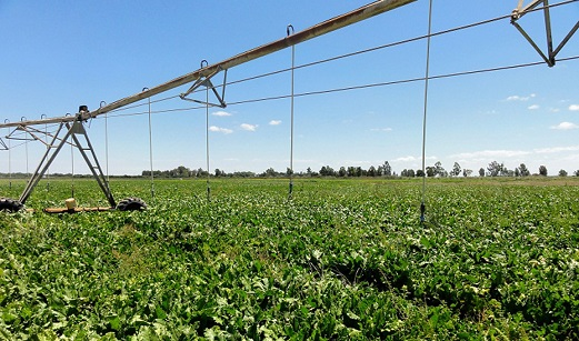 La Junta publica la convocatoria de ayudas para la mejora energética de explotaciones agropecuarias.