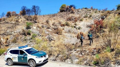 La Guardia Civil investiga a tres personas como presuntas autoras de un Delito de Incendio Forestal.