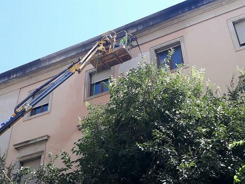 Justicia inicia las obras para restaurar la fachada de la Audiencia Provincial y su vidriera.