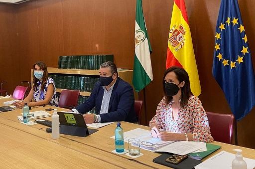 El Gobierno andaluz insta a la colaboración de todos para que la campaña de recogida de la aceituna en Jaén siga siendo segura.