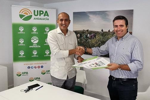 UPA Andalucía facilitará la contratación de mano de obra saharaui afincada en España para las campañas de temporada.