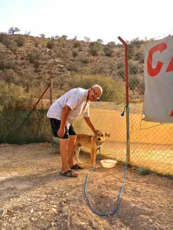 camping-aourir-chef-avec-chien-de-garde-2017