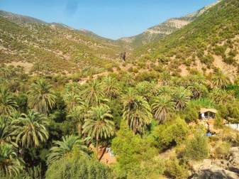 camping-aourir-morocco-outside-the-camping-2-2013