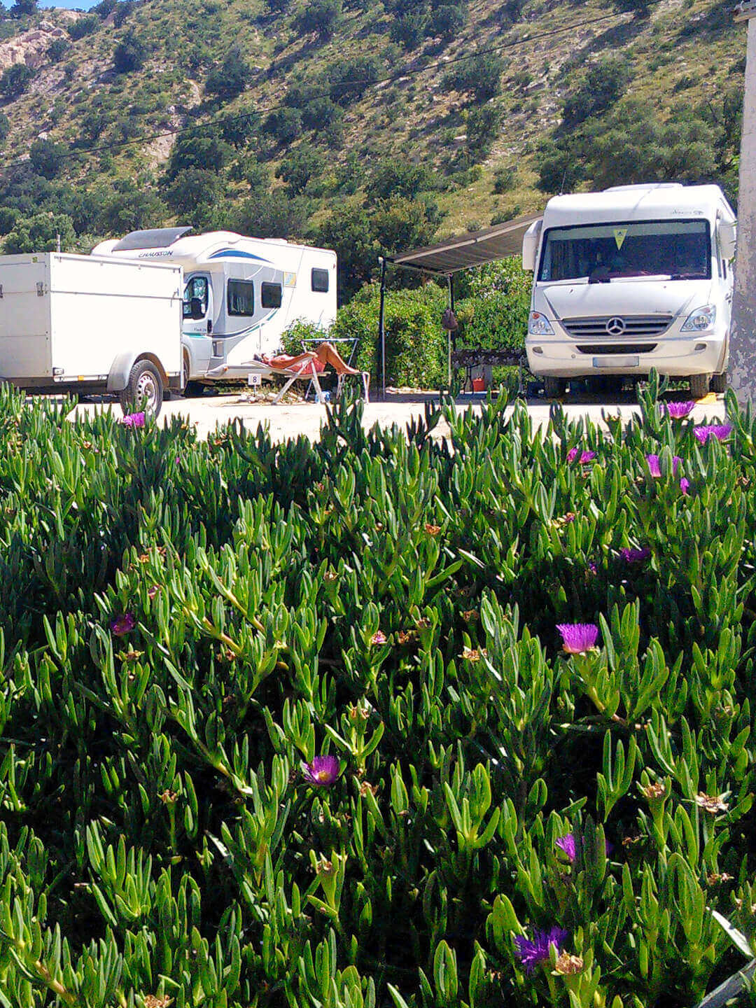 Camping Aourir – A look at the Camping Business, in the Background a Guest is sunbathing