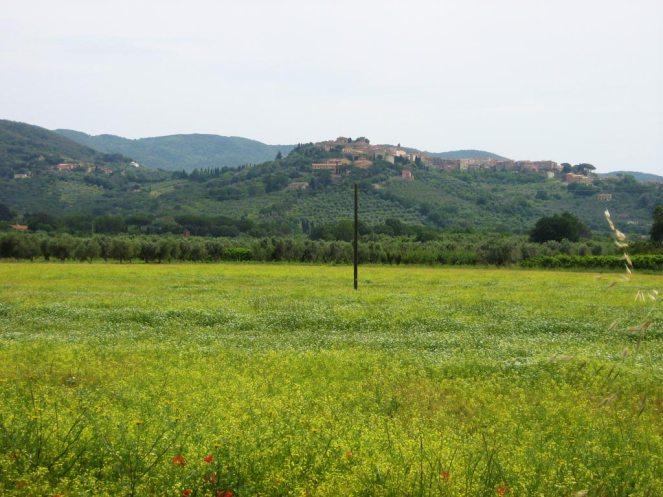 Panorama von Castagneto Carducci