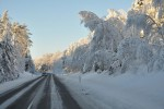 Vinterferietips fra Trygg Trafikk