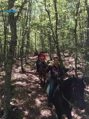 Rutas a caballo en el Valle de Valdeón, el corazón de Picos de Europa