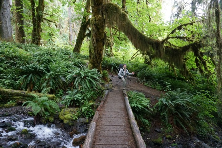 Hiking the Hoh Rainforest 1