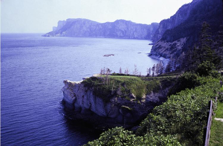 Vintage photo of Cap-Bon-Ami