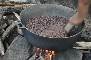 cacao (4)