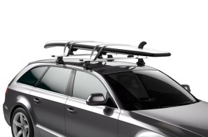 THULE DOCKGRIP 895