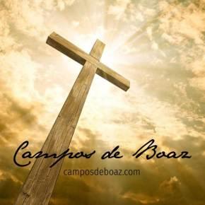 O lado vida da cruz