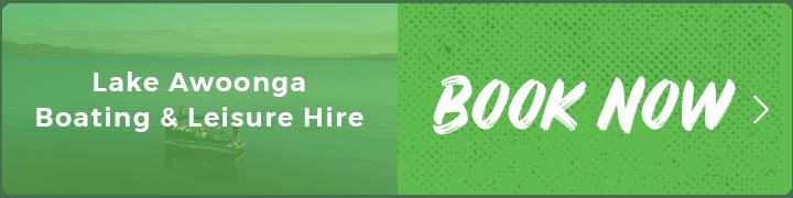 Lake awoonga boat hire