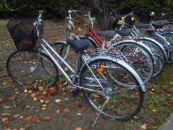 置き去りの自転車