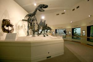 MSU museum dinosaurs