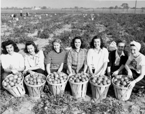 Women pose at the WWII Victory Garden, circa 1940s. courtesy MSU Archives
