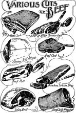Standard Cuts of Meat (1908) - Image Source