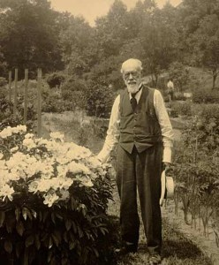 Beal in the botanical garden. Image courtesy of MSU Archives & Historical Collections