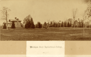 Faculty Row circa 1874. Image courtesy of MSU Archives & Historical Collections